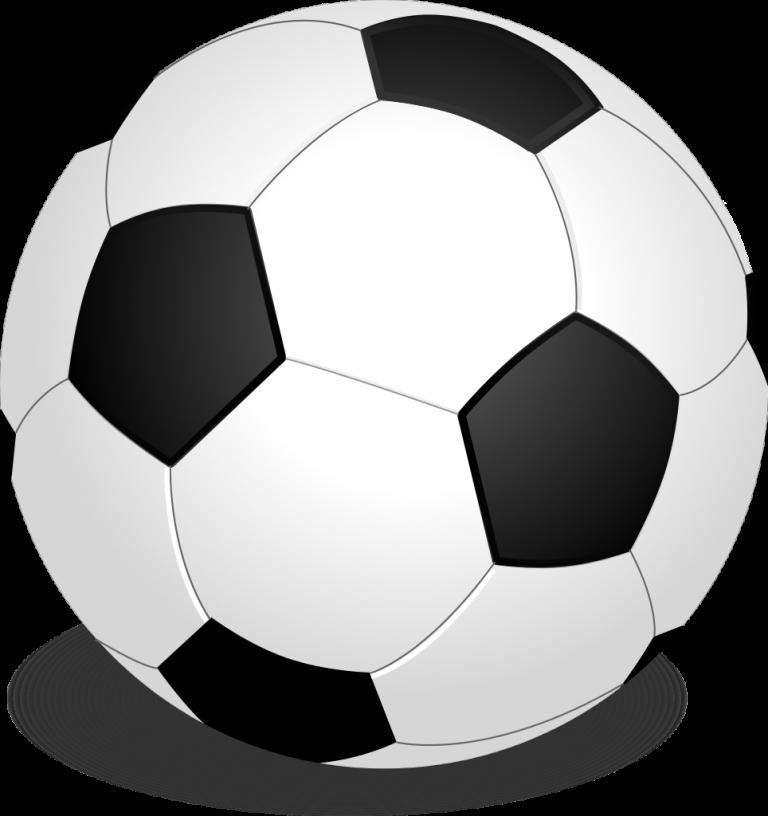Soccer Ball – EM11